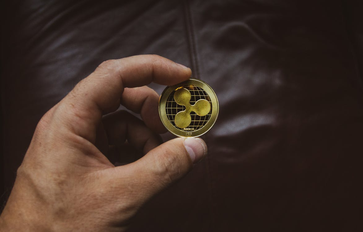 Person Holding Round Gold-colored Coin