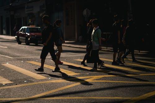 Ingyenes stockfotó árnyékok, emberek, gyalogátkelőhely, sötét témában