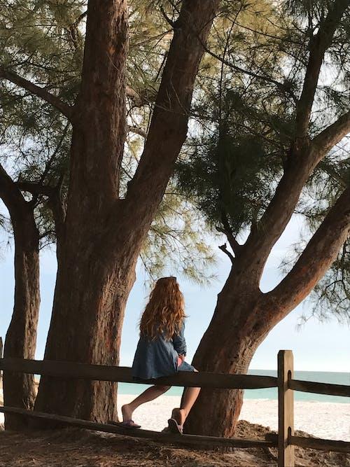Woman Sitting on Wooden Fence Beside Tree