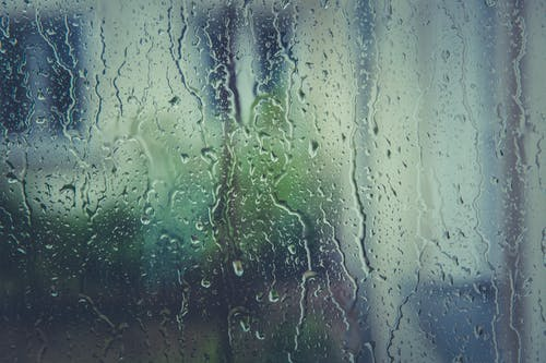 Free stock photo of rain, raindrops, rainy, water
