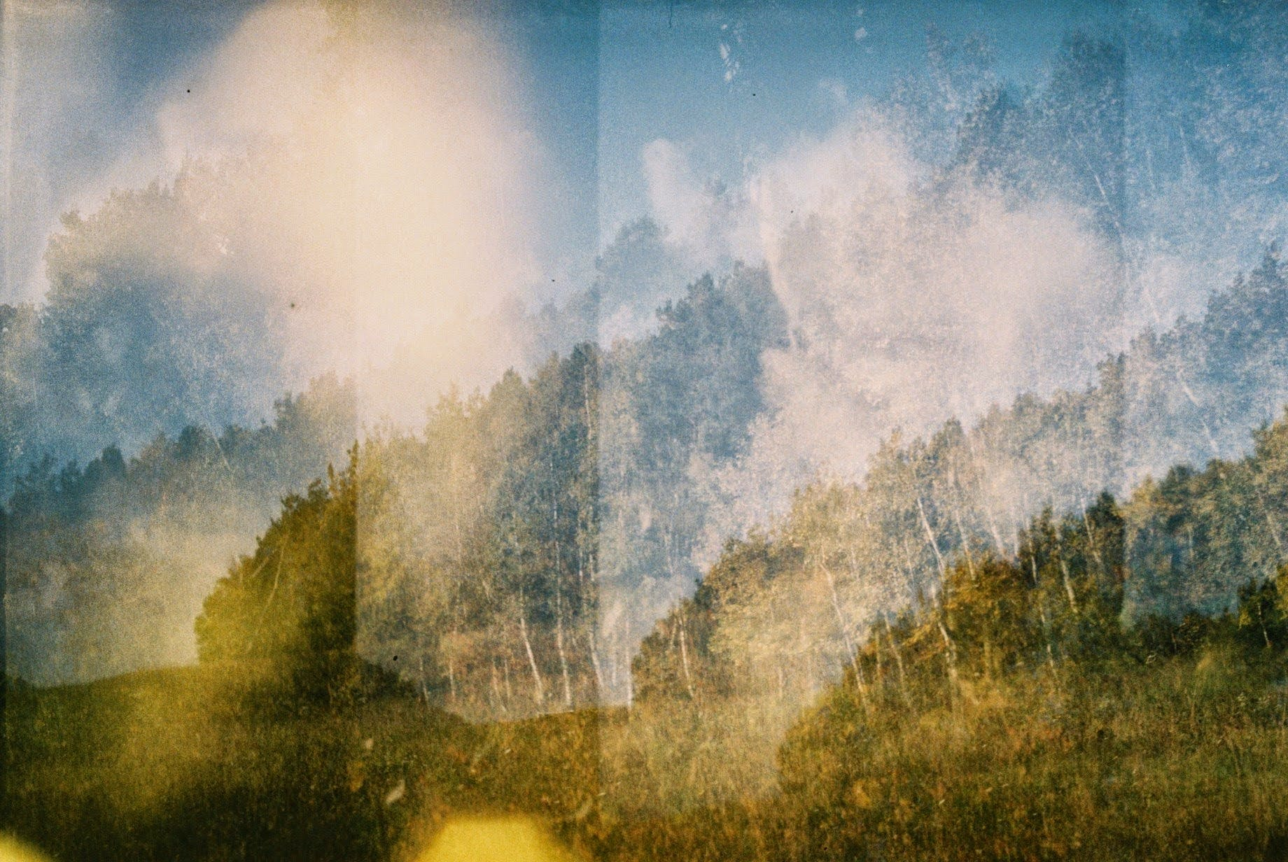 Free stock photo of analog camera, double exposure, field, forest