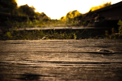 Shallow Focus Photography of Wooden Plank