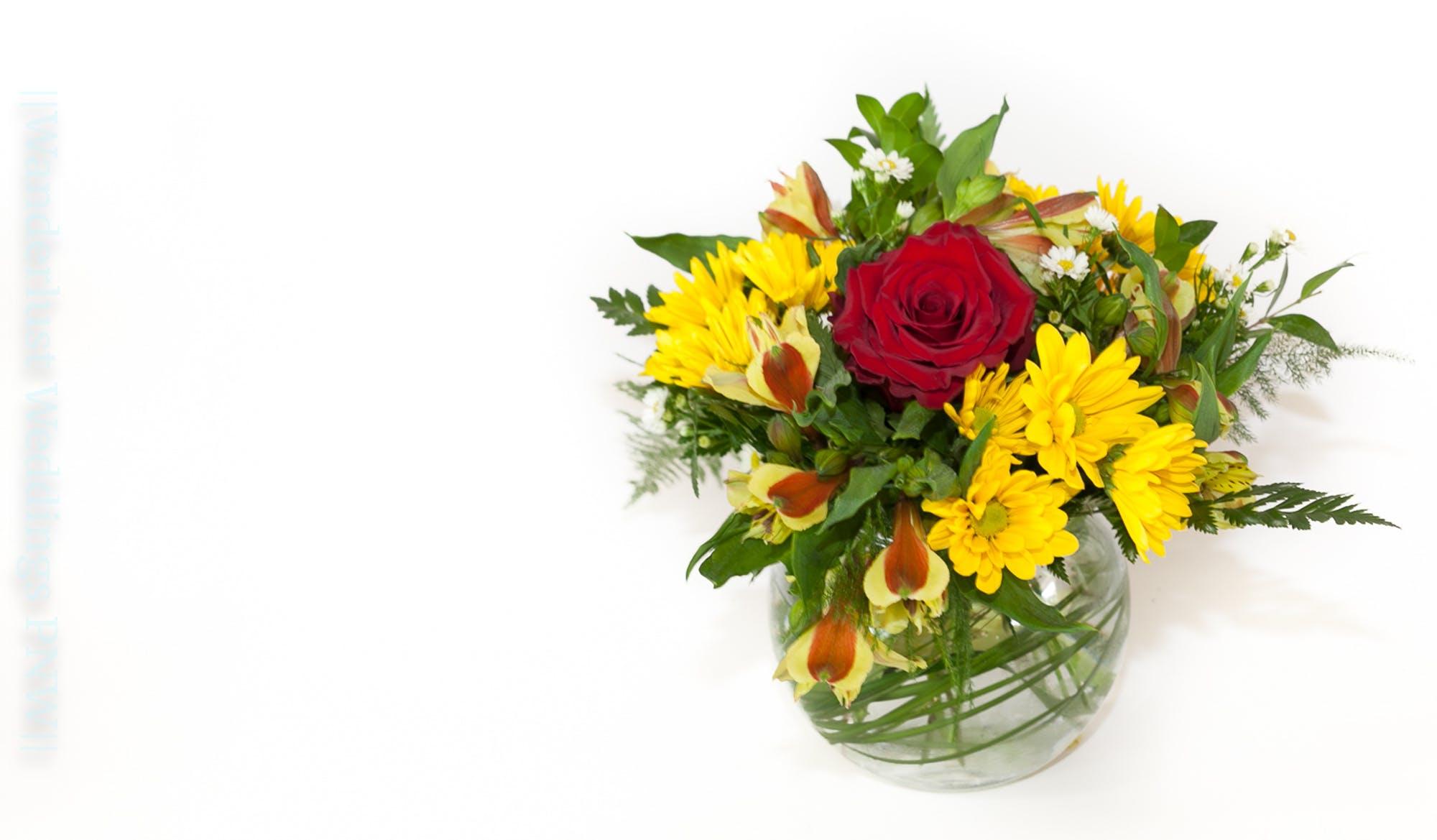 beautiful, beautiful flowers, betsy johnson