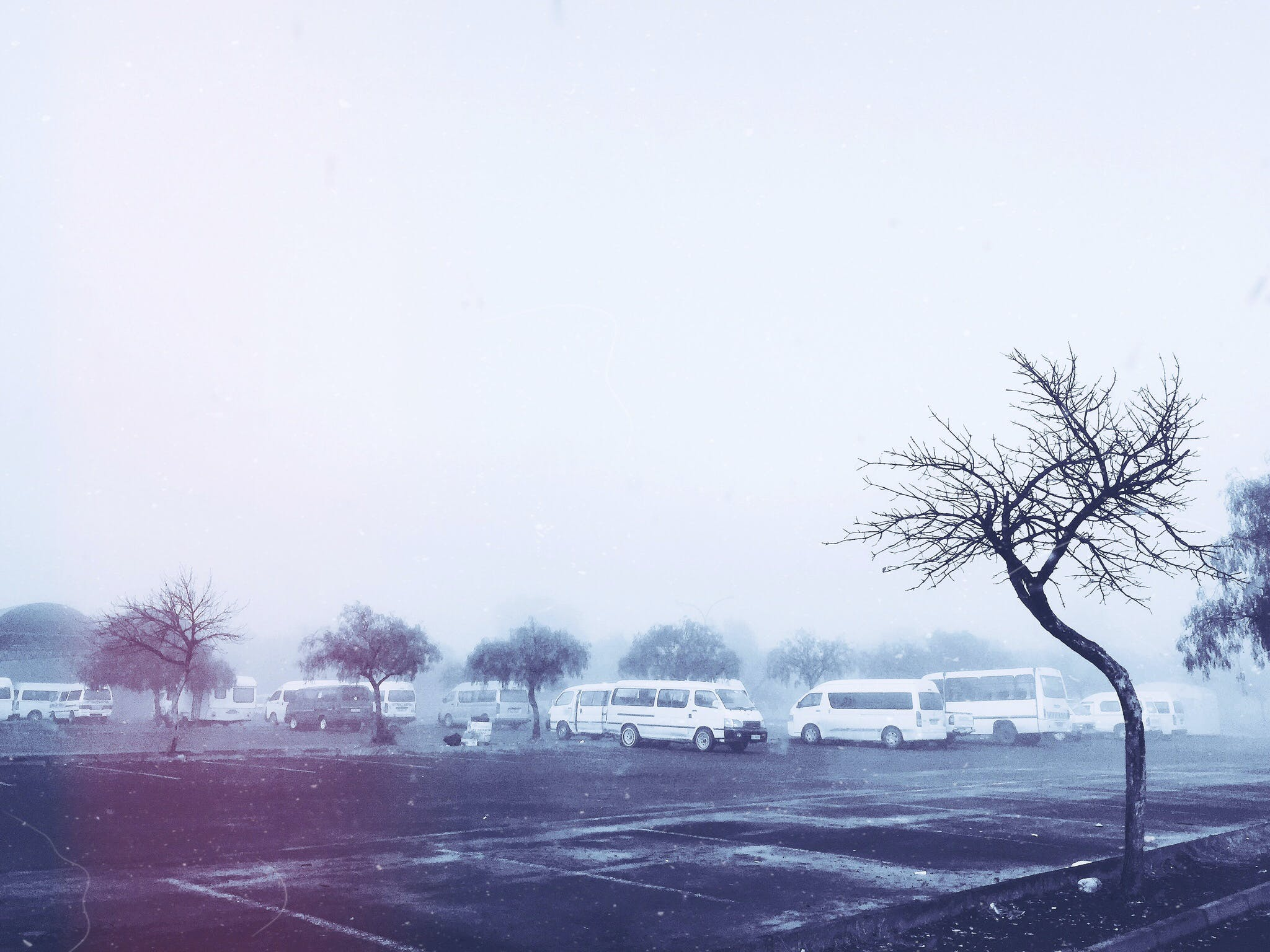 Free stock photo of South African Taxi rank on a cold morning