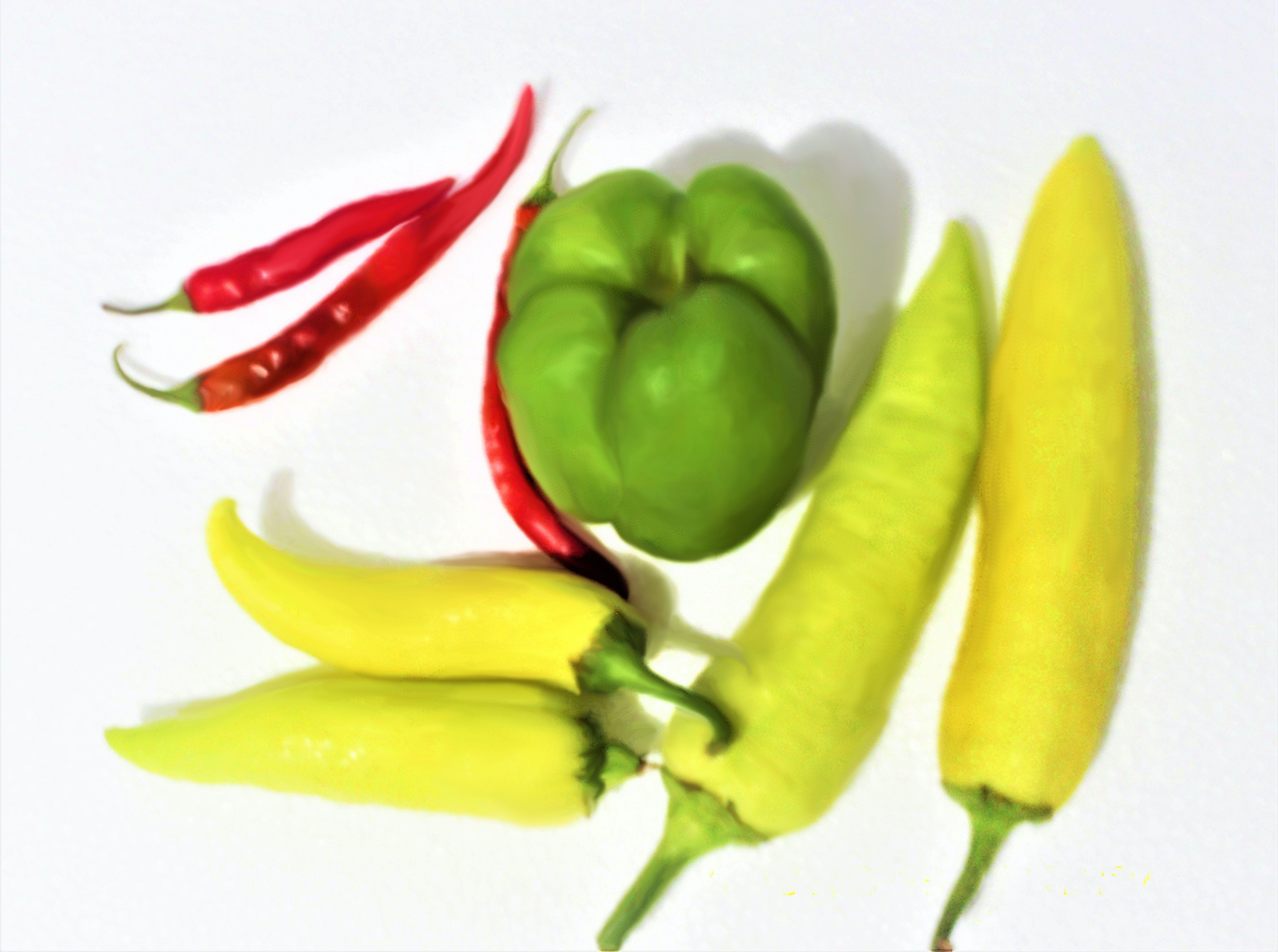Free stock photo of chillies, green chillies, Red and green chillies, red chillie