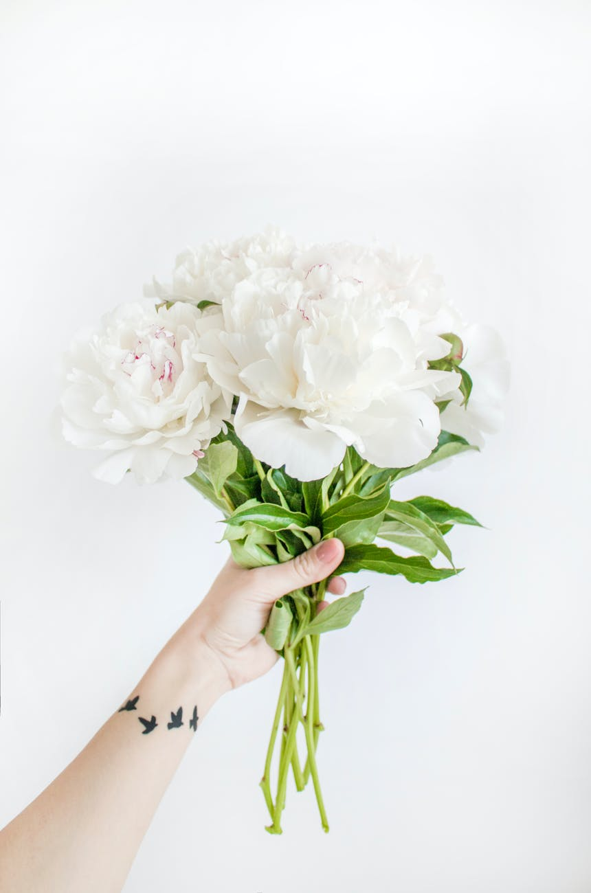 Person Holding White Peony Bouquet Closeup Photography