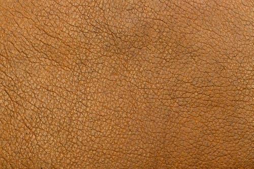 Gratis lagerfoto af baggrund, brun, design, element