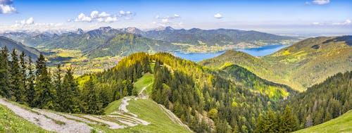 山谷, 景觀, 森林, 樹木 的 免費圖庫相片