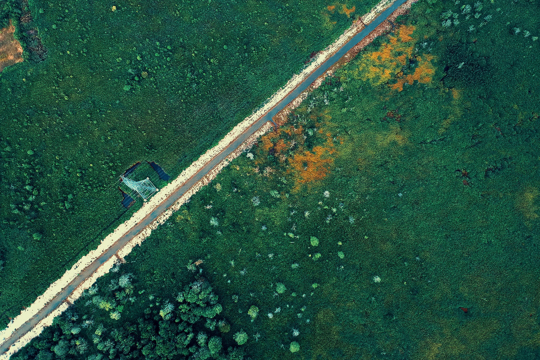 Free stock photo of bird's eye view, road, daylight, from above