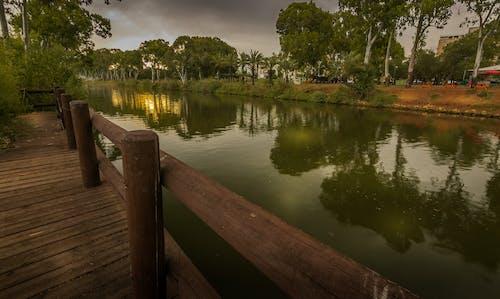 Fotos de stock gratuitas de amanecer, otoño, paisaje terrestre, parque