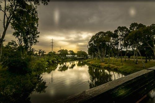 Free stock photo of bridge, landscape, park, sky