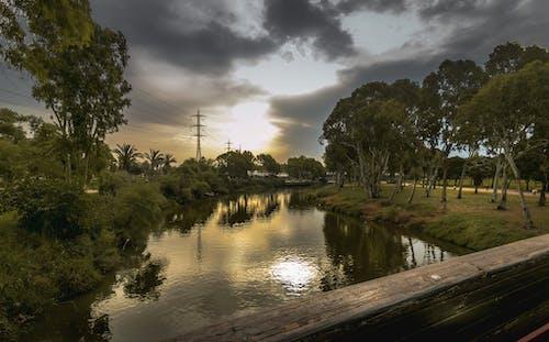 Free stock photo of bridgelandscape morning, park, sunrise