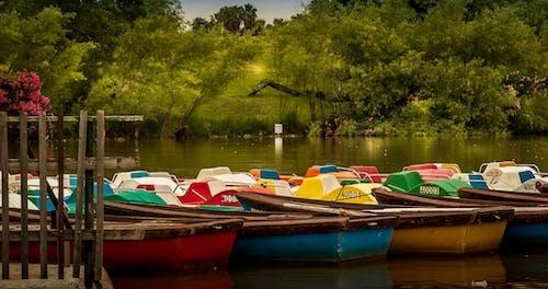 Free stock photo of boats, landscape, park