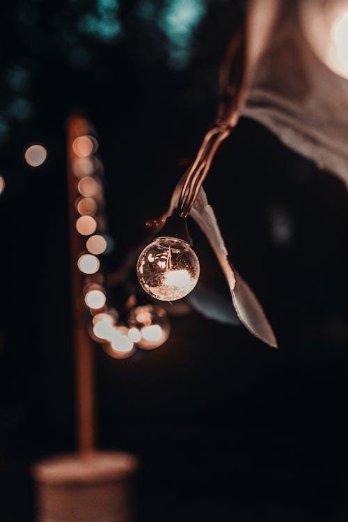 光, 宏觀, 燈串, 燈泡 的 免費圖庫相片