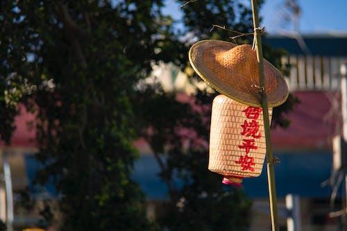 Darmowe zdjęcie z galerii z hong kong, kapelusz, latarnia papierowa, wiszący