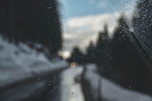 Kostenloses Stock Foto zu glas, nass, regen, regentropfen