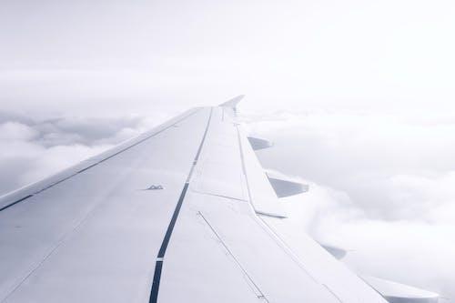 Безкоштовне стокове фото на тему «високий, крило, крило літака»