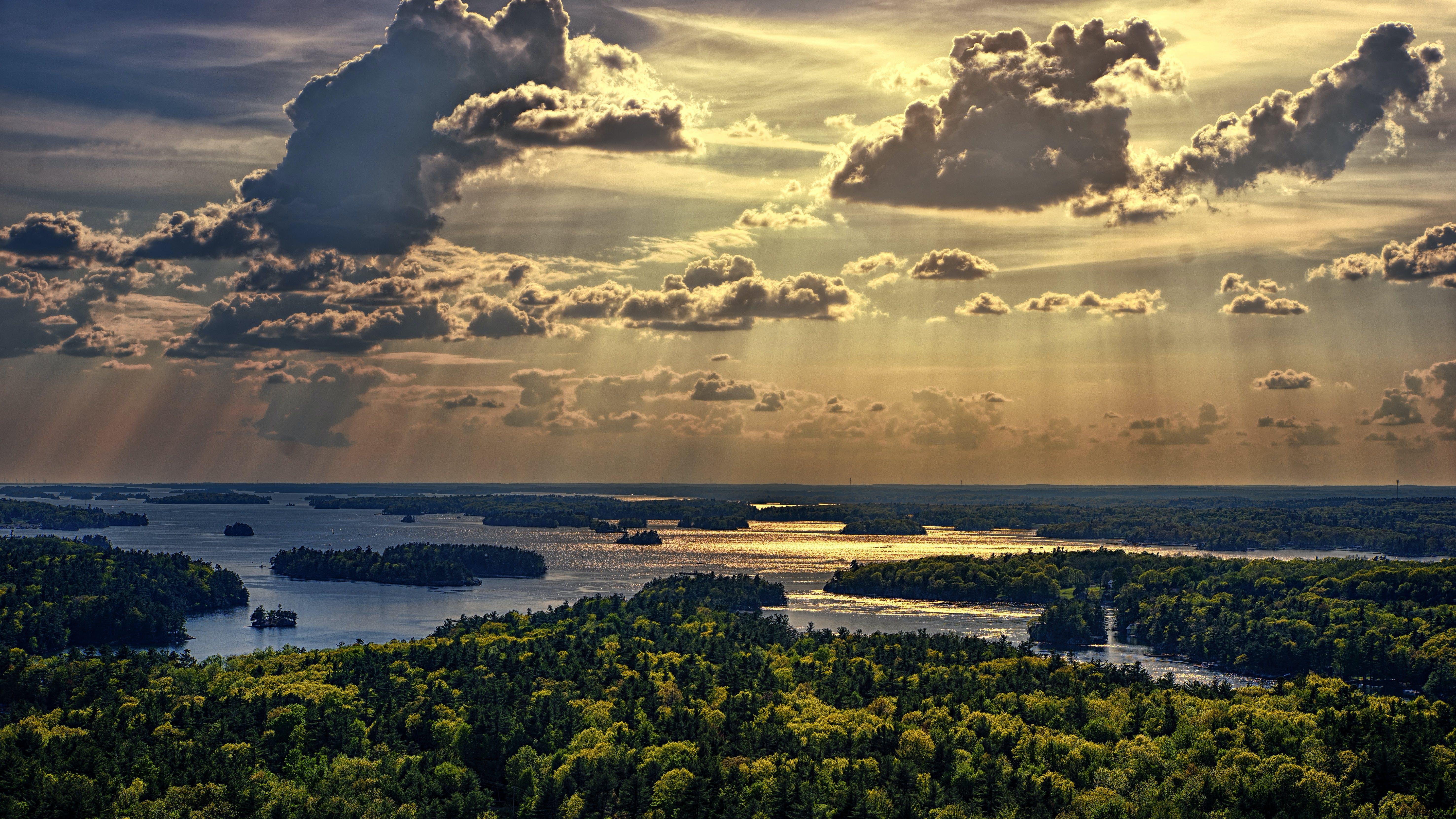 Kostenloses Stock Foto zu bäume, dämmerung, himmel, sonnenaufgang