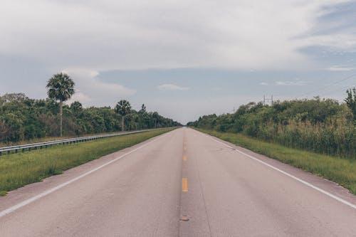 Photos gratuites de arbres, asphalte, autoroute, ciel