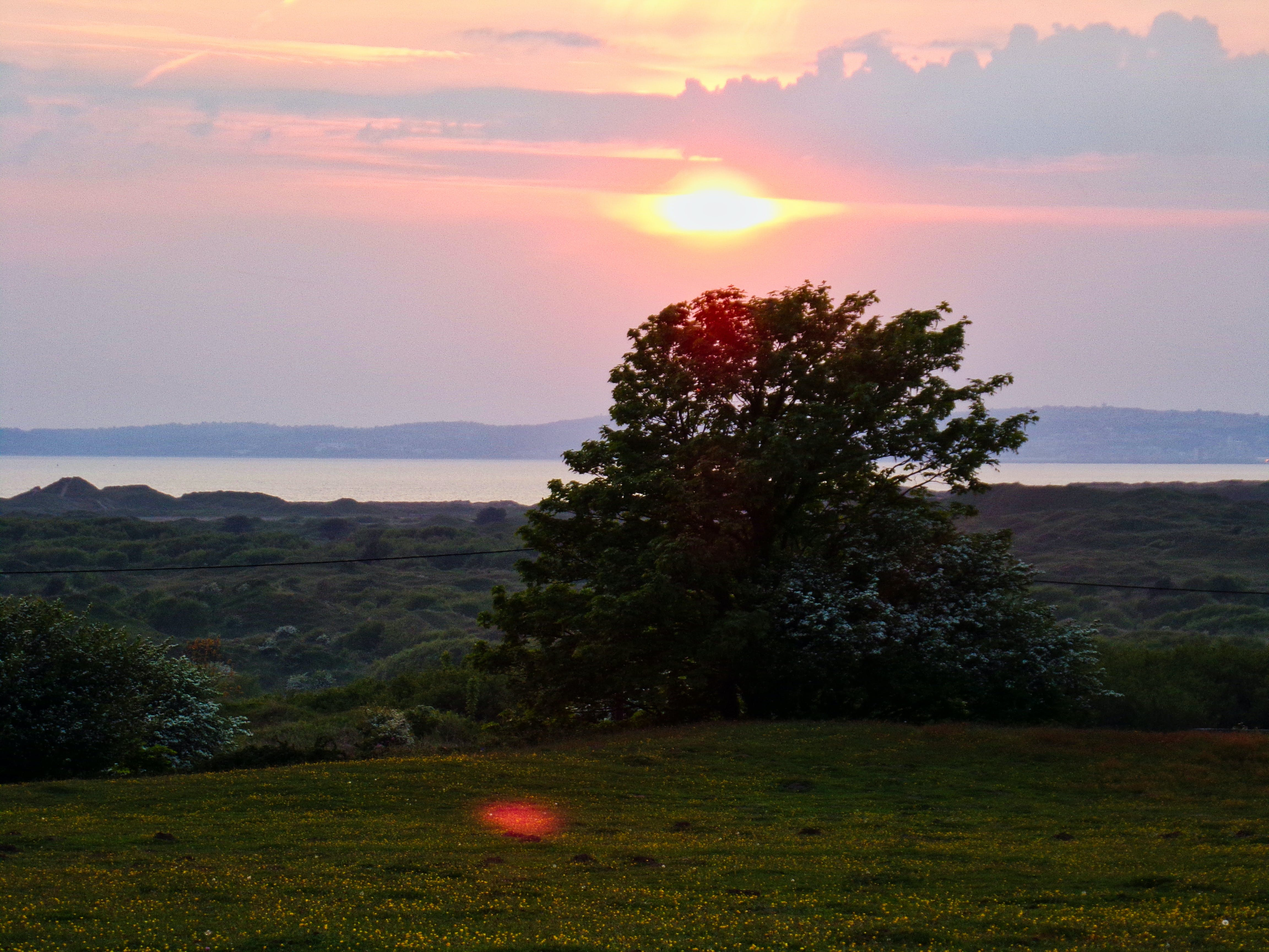 Free stock photo of mother nature, nature, nature reserve sunset, pink sunset
