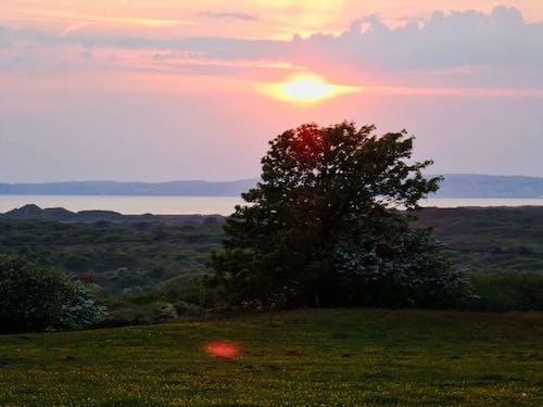 Foto stok gratis alam, ibu Pertiwi, matahari terbenam, matahari terbenam cagar alam