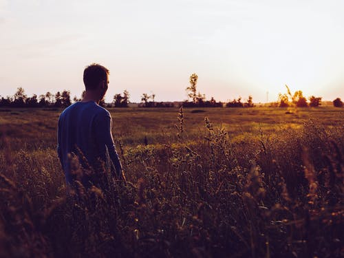 Man in Blue Sweatshirt in the Middle of Field during Sunset