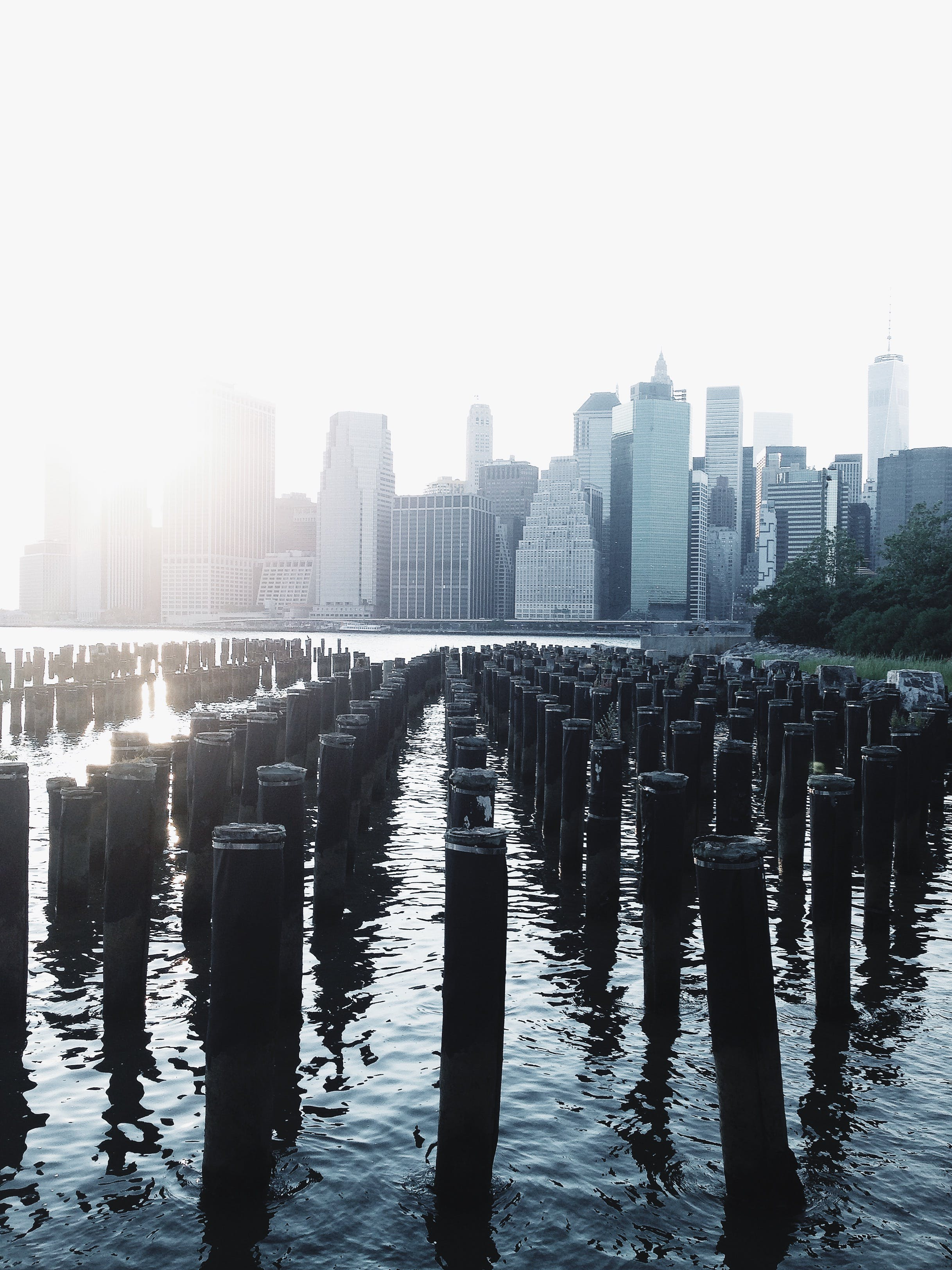 Landscape Photography of Brown Posts on Water Near White High-rise Buildings