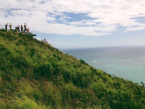 Foto stok gratis air, alam, bukit, cairan