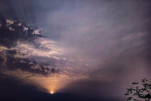 #tree, altın rengi Güneş, bulut, bulut oluşumu içeren Ücretsiz stok fotoğraf