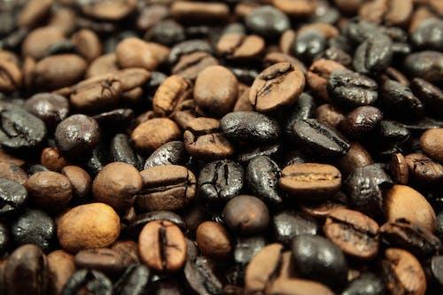 カフェイン, コーヒー, コーヒー豆の無料の写真素材