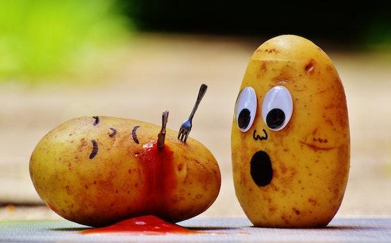 Shallow Focus Photography of Potato