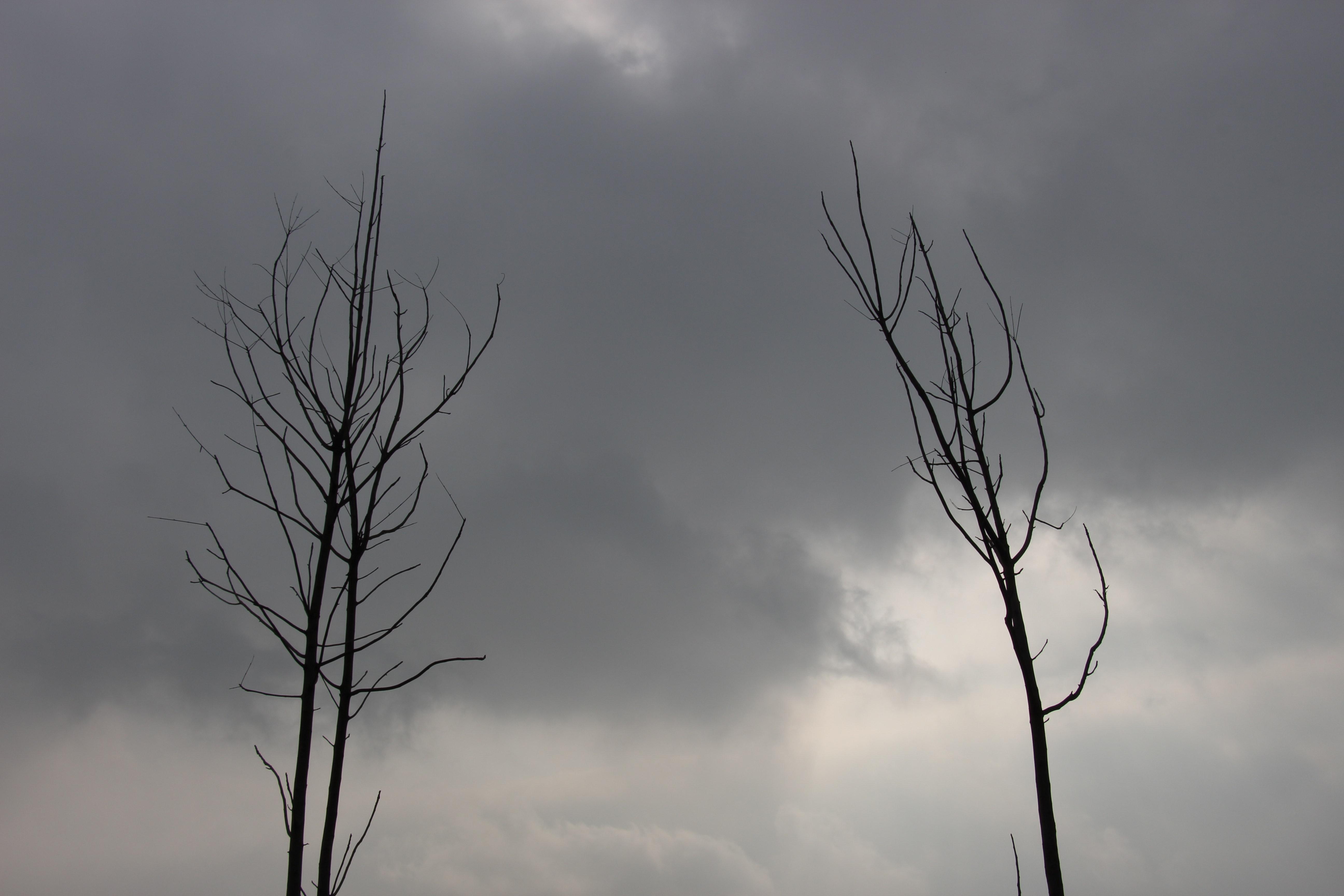 ... bầu trời đen. Nhiếp ảnh gia