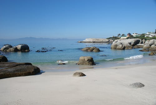 Free stock photo of cape peninsula beach, false bay, penguin colony
