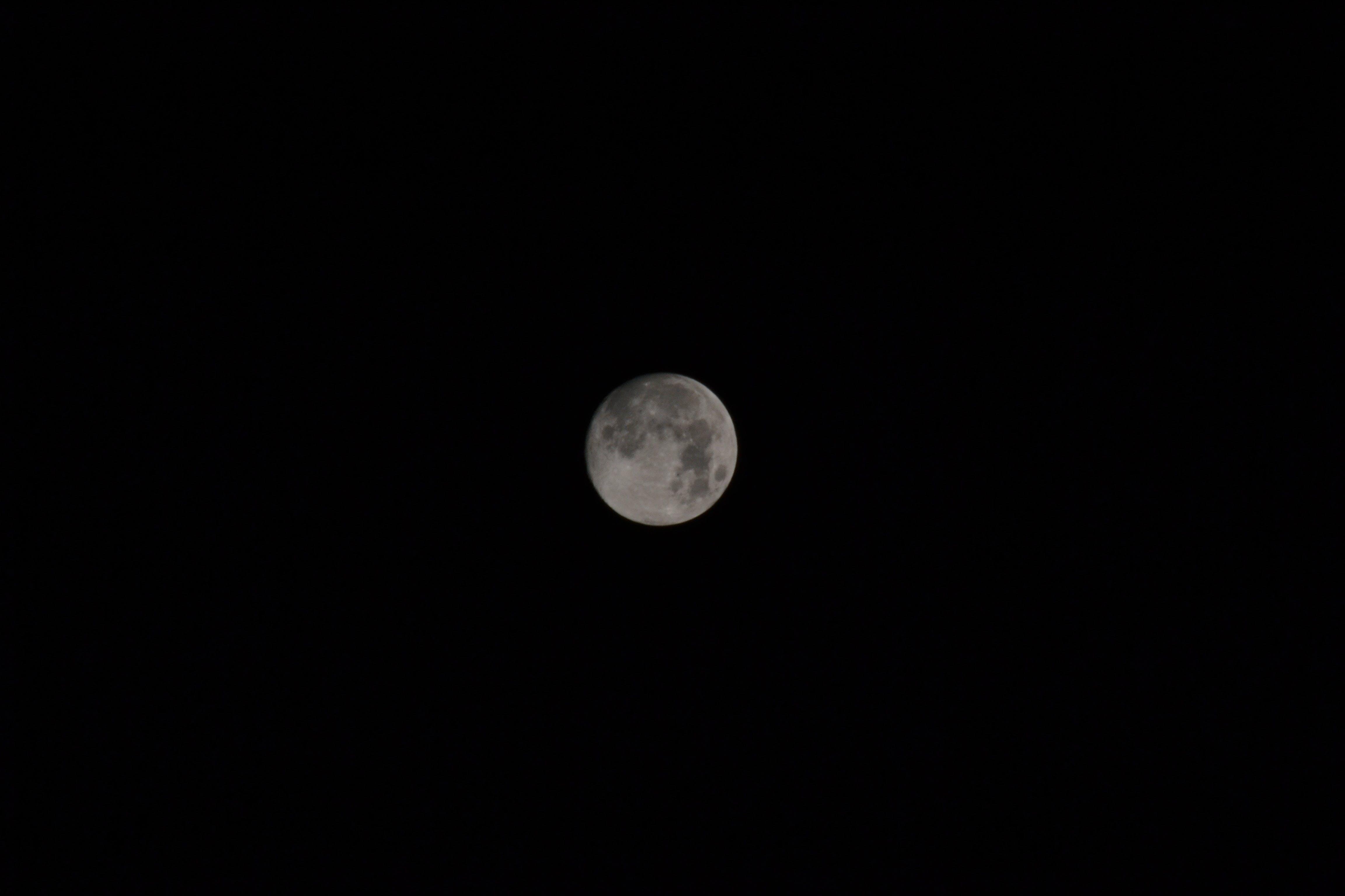 Free stock photo of astro, crescent moon, dark, Dark Sky