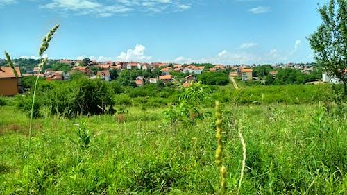 Бесплатное стоковое фото с дома, Загородный дом, поле, разноцветные дома