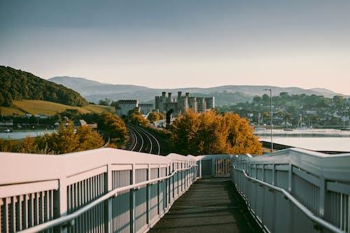 Photography of Pathway Between Railings
