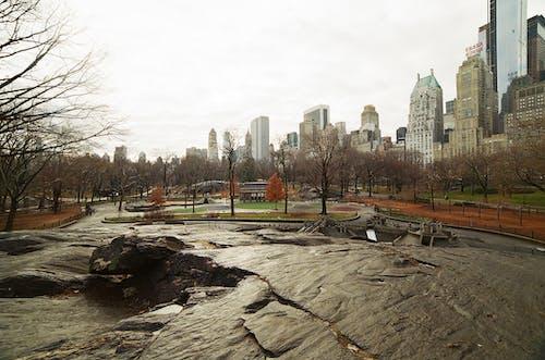 Kostenloses Stock Foto zu 35mm, analog, analogkamera, new york