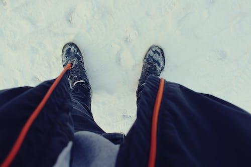 Kostenloses Stock Foto zu schnee