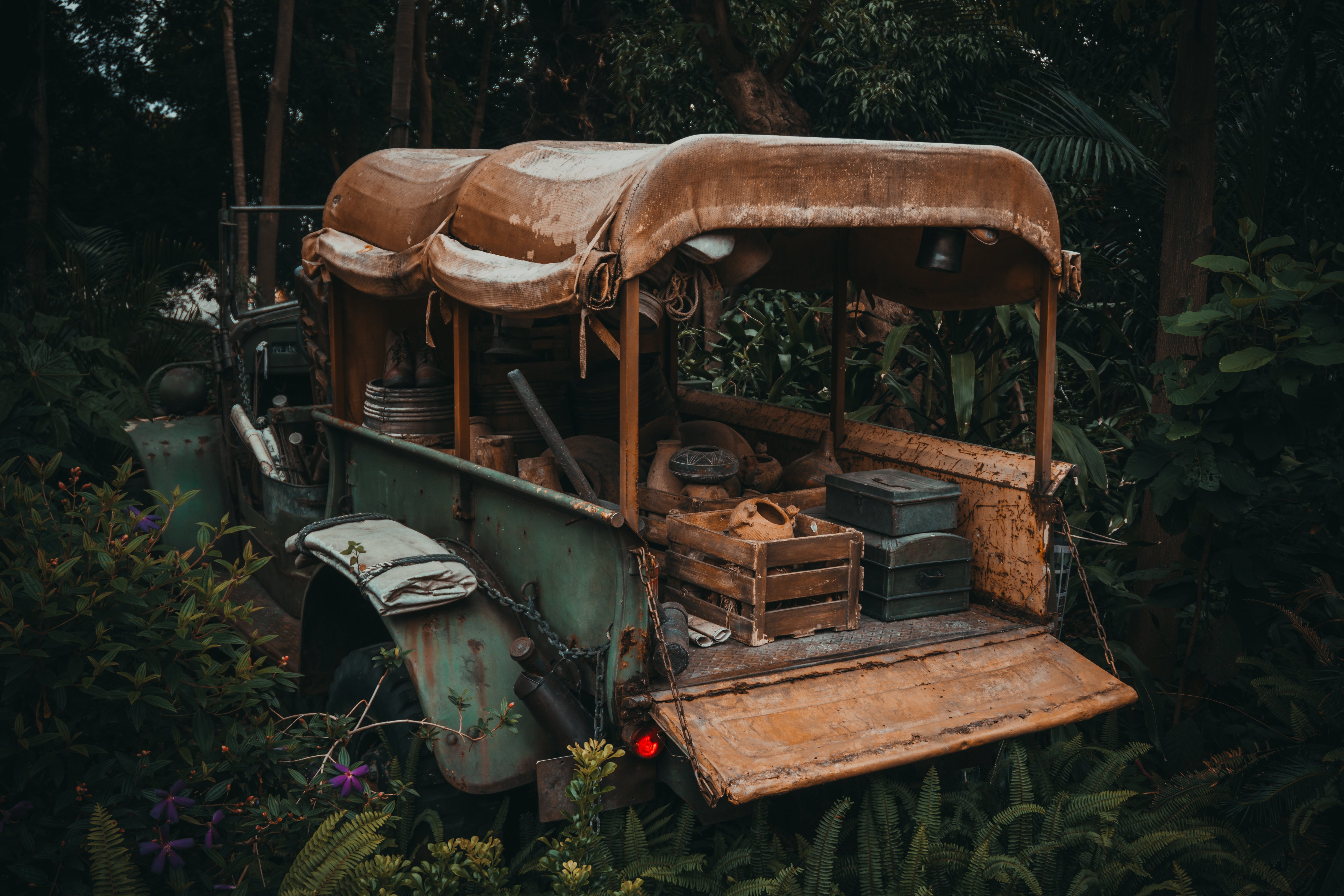 Green and Brown Vehicle in Forest