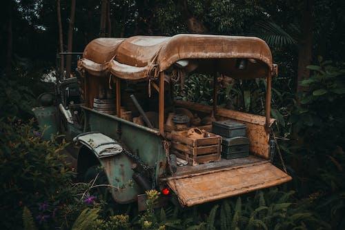 Immagine gratuita di abbandonato, albero, arrugginito, legno