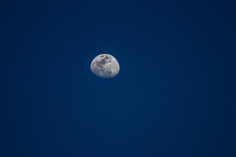 Free stock photo of blue, moon, sky