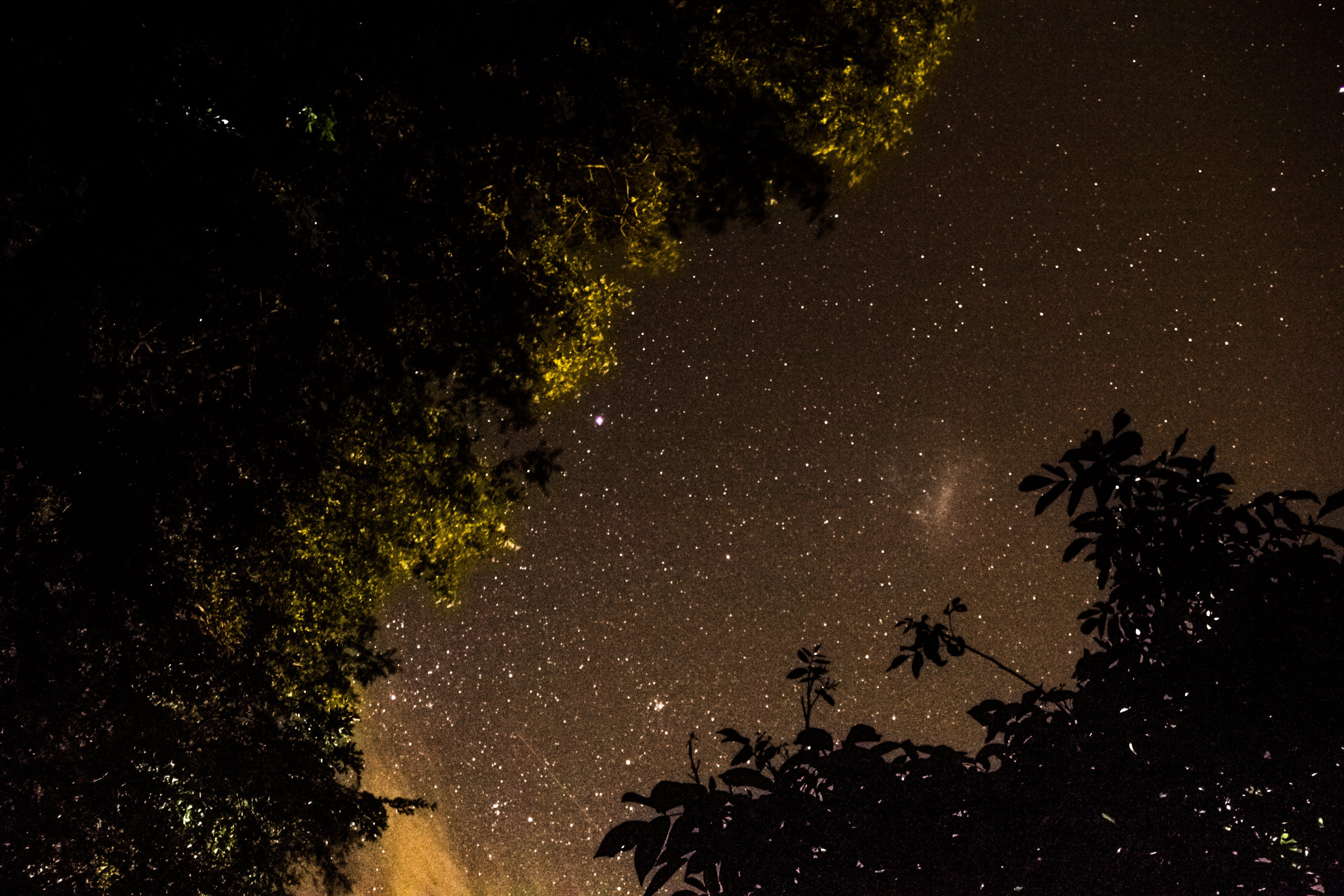 Free stock photo of galaxy, long exposure, night, sky