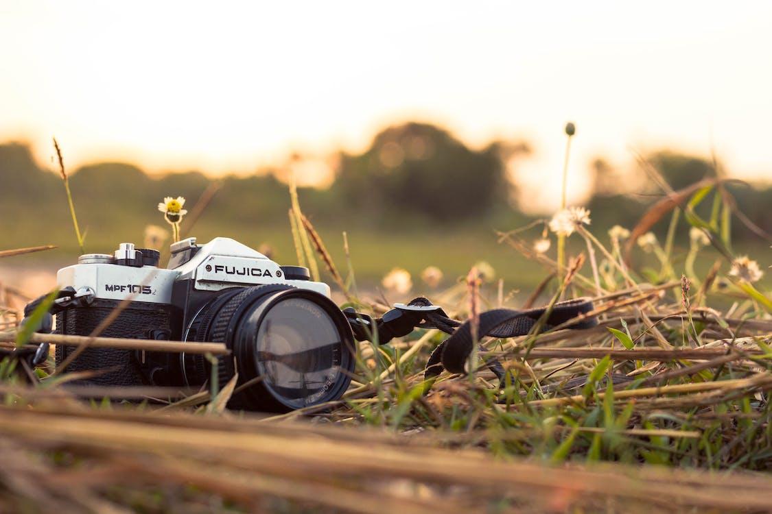 barvy, denní světlo, fotoaparát