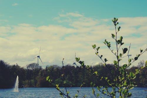 Kostenloses Stock Foto zu blaue himmel, natur, naturfotografie, stadtpark