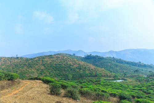 Free stock photo of free wallpaper, HD wallpaper, idukki, kerala