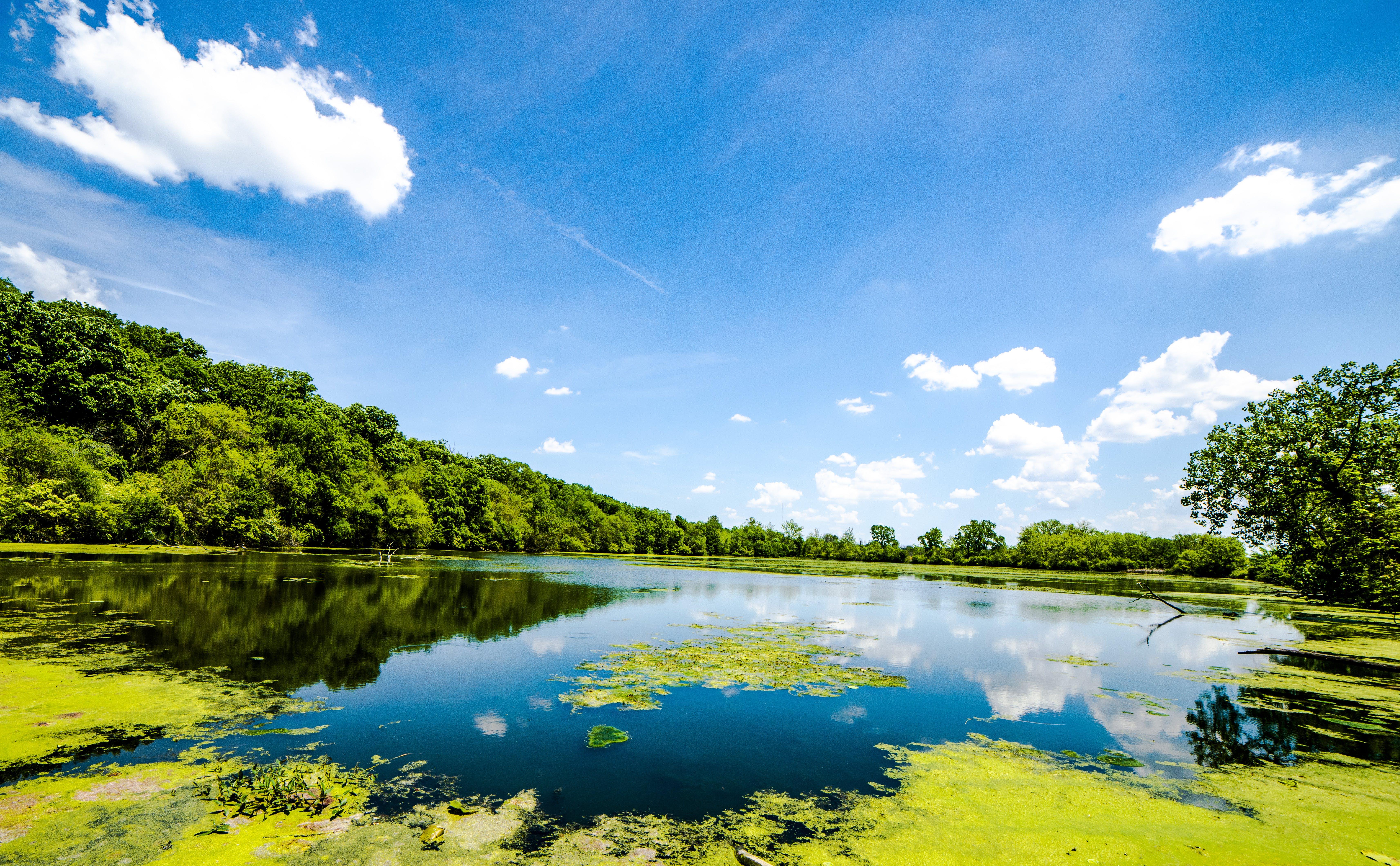 Gratis arkivbilde med naturskjønn, refleksjon, sky, vann