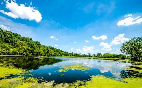 Photos gratuites de arbre, eau, nuage, pittoresque