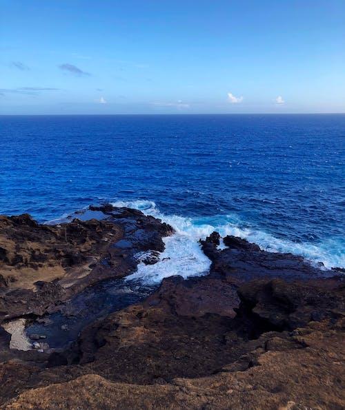 Gratis arkivbilde med blå, bølger, hav, hawaii