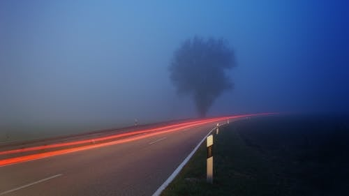 Time-lapse Photography of Fog Filled Road Near Tree