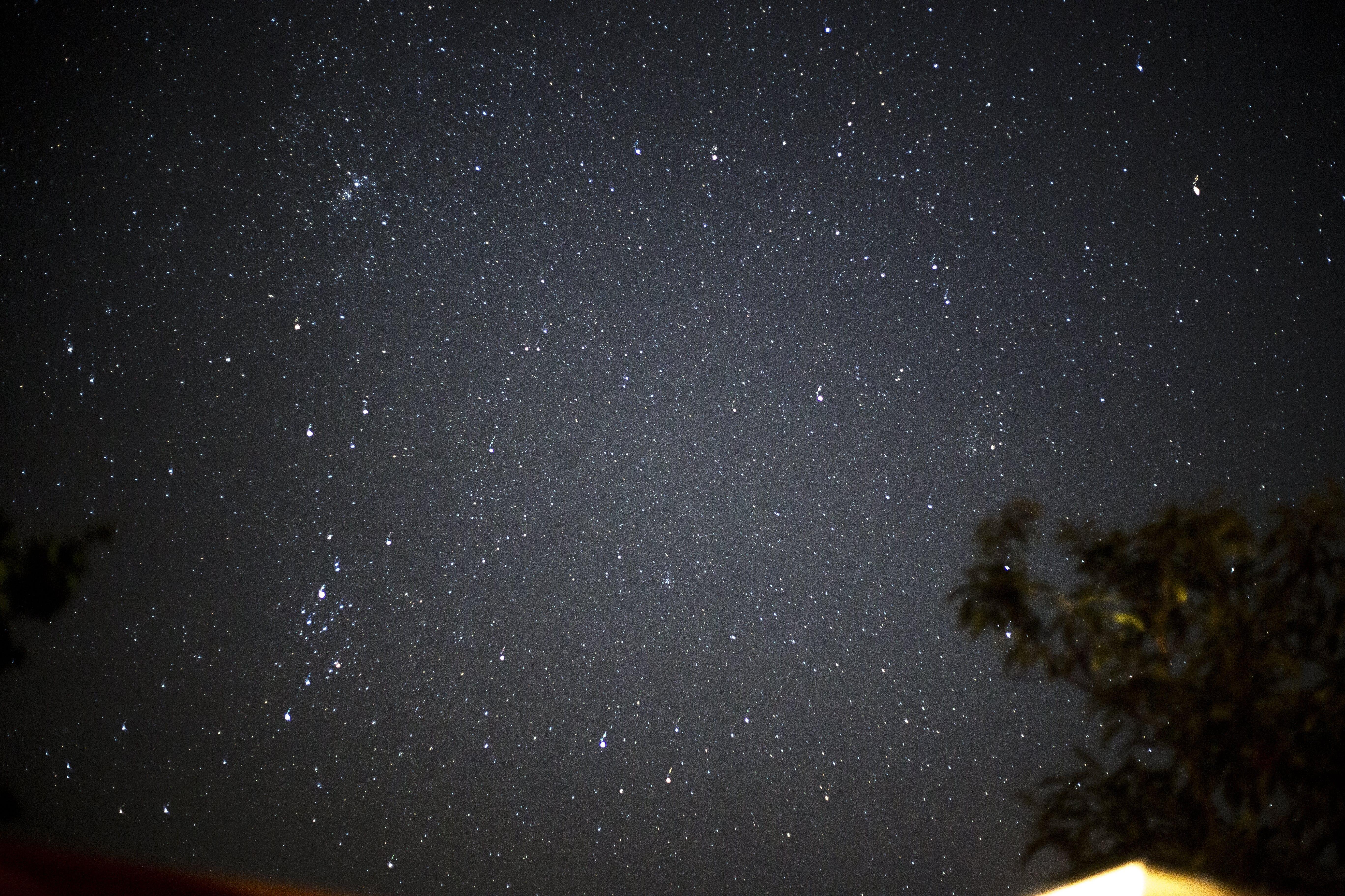 Základová fotografie zdarma na téma astronomie, dlouhá expozice, hvězda, hvězdy